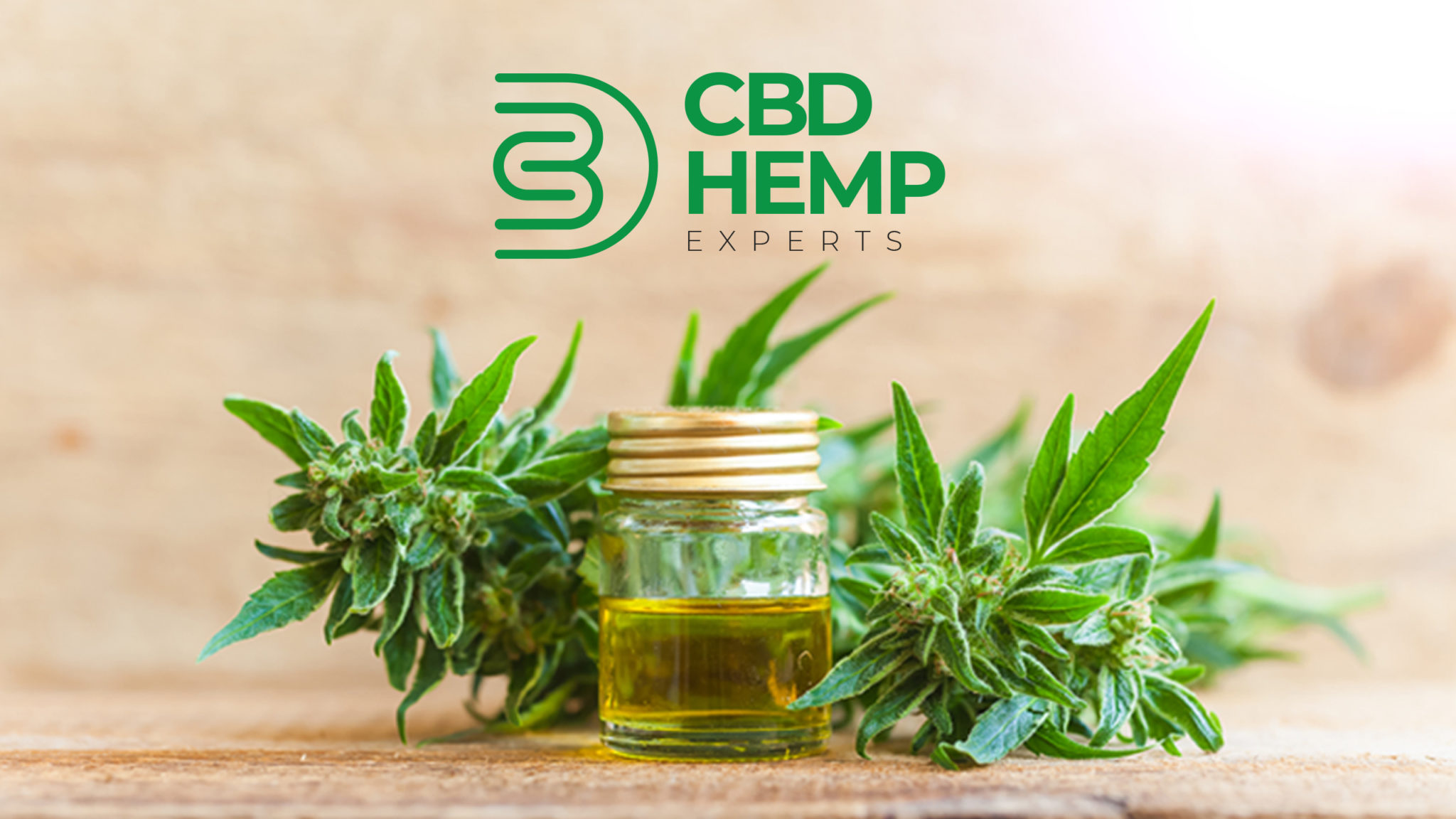 CBD Hemp Experts News